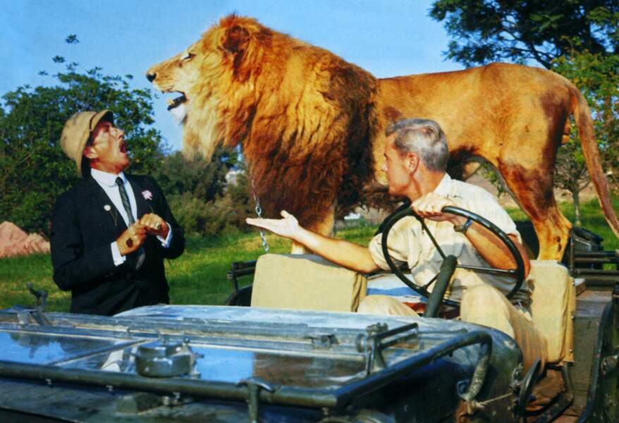 Clarence le lion dans Daktari (1966)