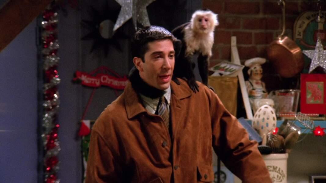 Marcel, le singe capucin que Ross a adopté dans FRIENDS