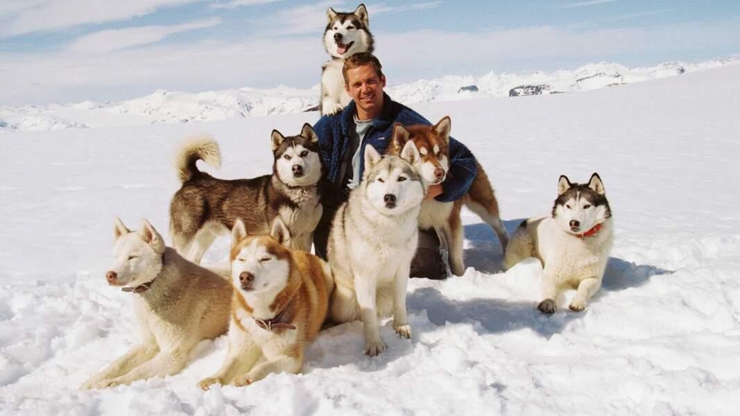 Antartica, prisonniers du froid (2006)