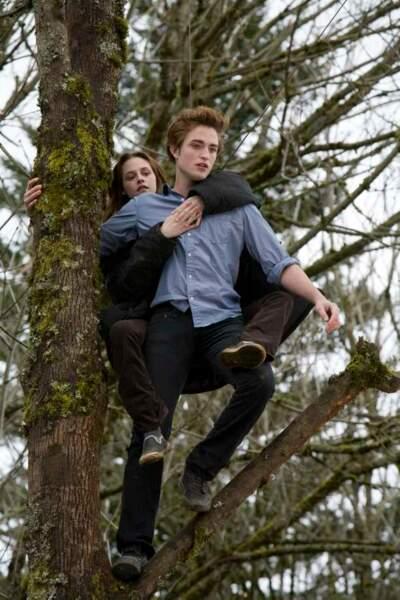 Edward et Bella - Twilight chapitre 1 : Fascination
