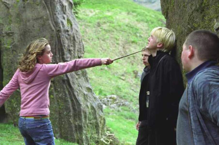 Harry Potter et le prisonnier d'Azkaban, d'Alfonso Cuaron (2004)