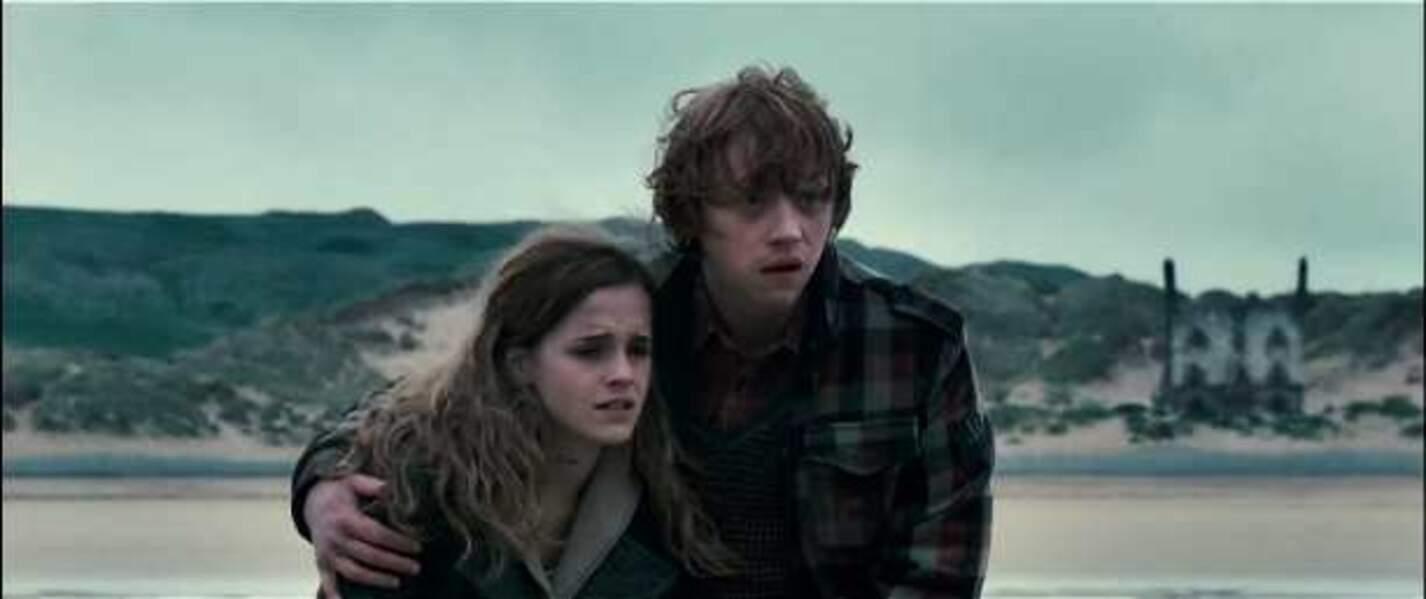 Harry Potter et les reliques de la mort, de David Yates (2010 et 2011)