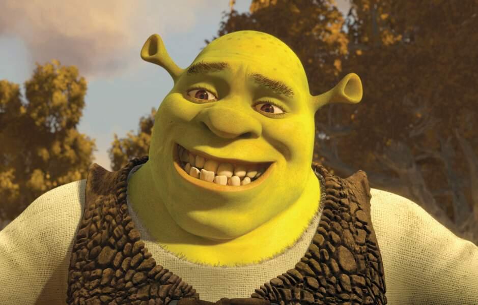 Et l'Ogre Shrek alors ? Il est doublé par un nul. Enfin, plutôt un ex-Nul.