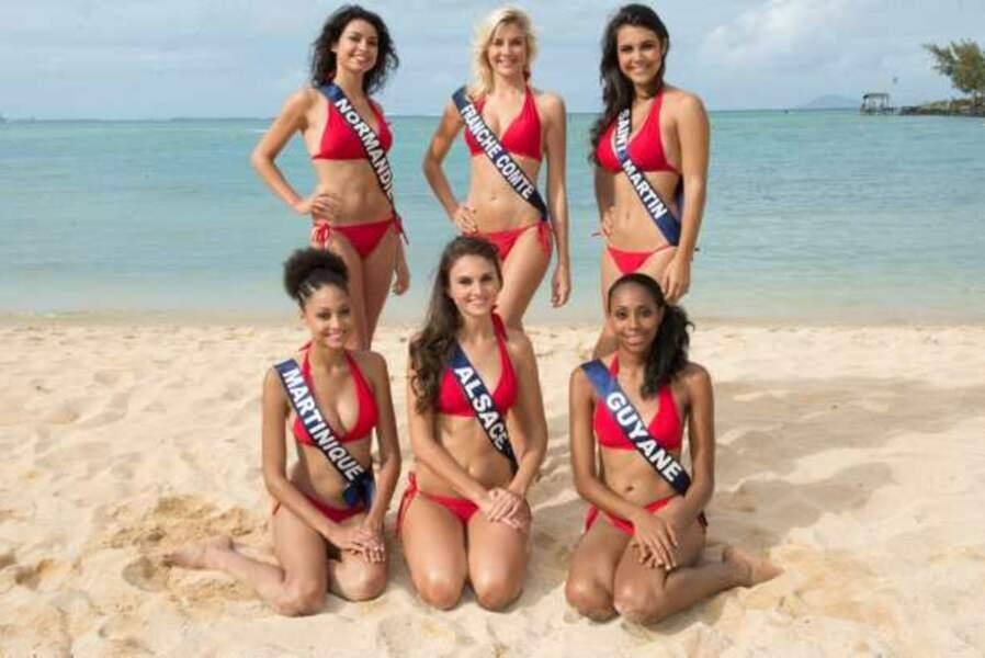 Miss Guyane, Alsace, Saint-Martin, Franche-Comté, Normandie, Martinique