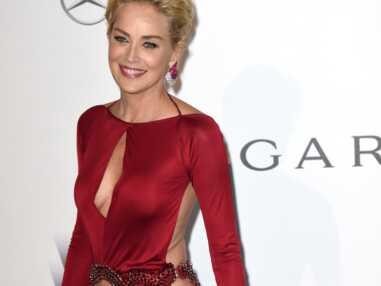Sharon Stone, Carla Bruni, Conchita Wurst : toutes les stars du gala de l'Amfar