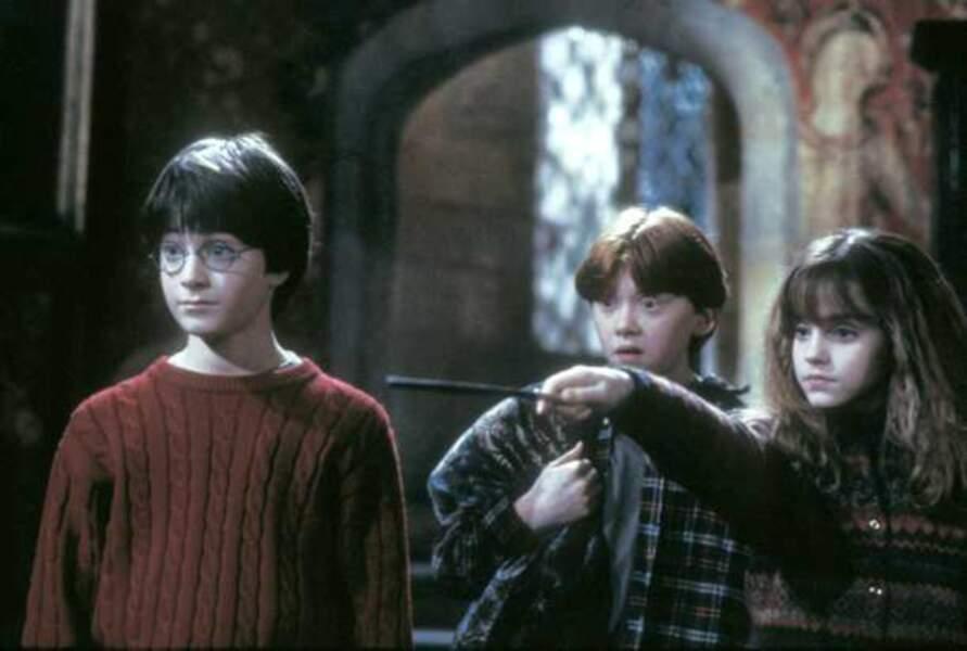 Harry Potter à l'école des sorciers, de Chris Colombus (2001)