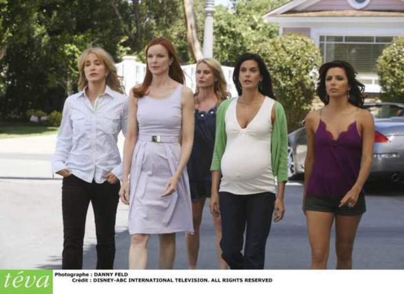 Desperate Housewives - Wisteria Lane