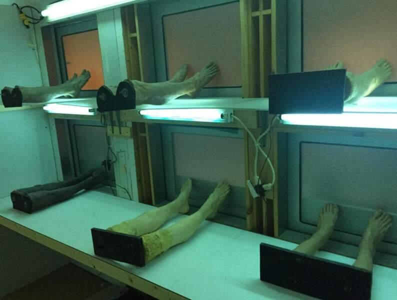 Voilà à quoi ressemblent les cadavres des Experts...côté pile....