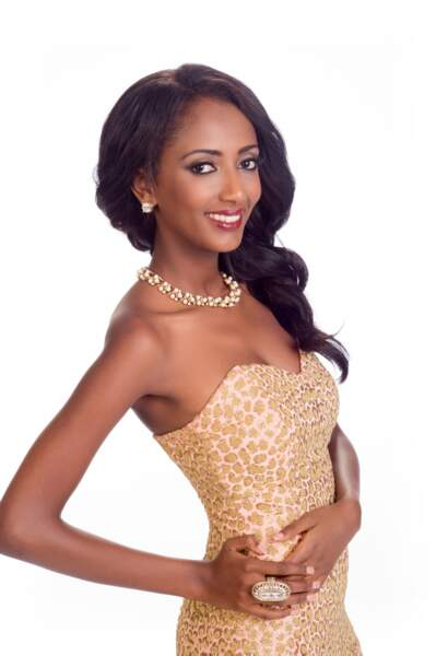 Hiwot Bekele, Miss Ethiopie 2014