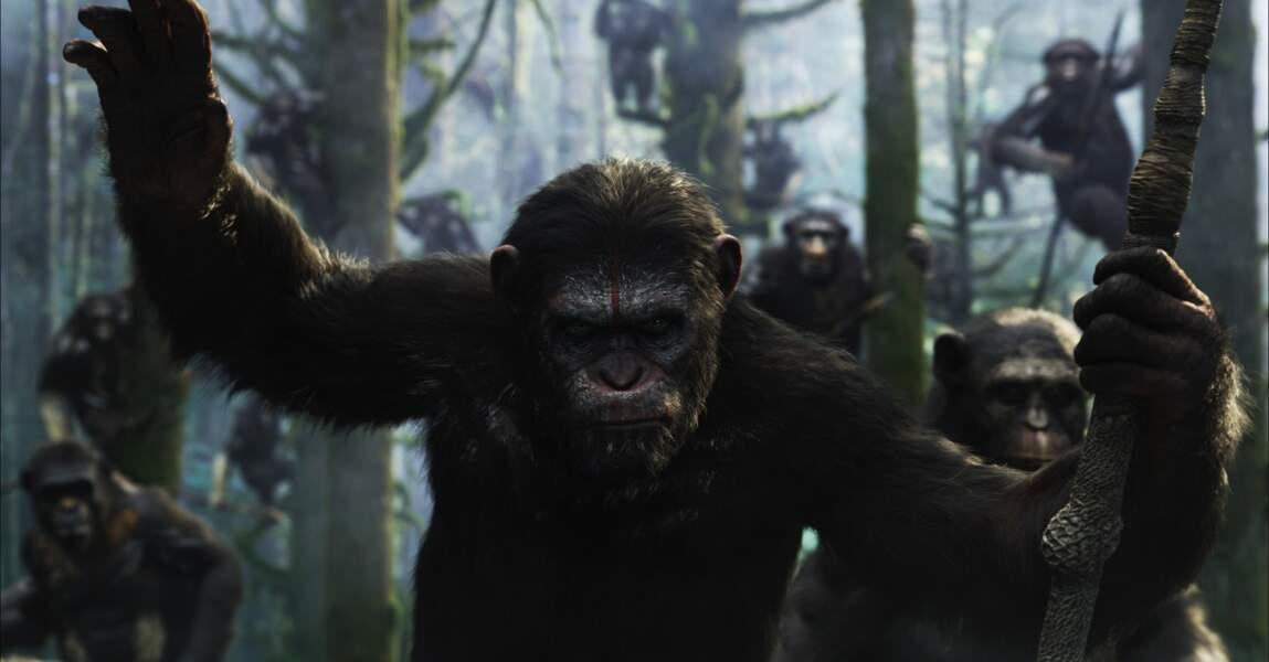 La Planète des singes: l'affrontement (sortie le 30 juillet 2014)