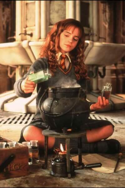 Harry Potter et la chambre des secrets, de Chris Colombus (2002)