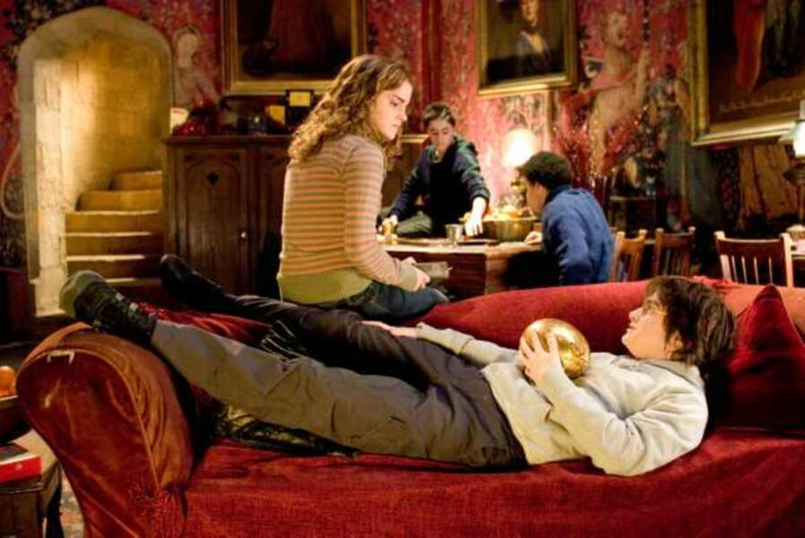 Harry Potter et la coupe de feu, de Mike Newell (2005)