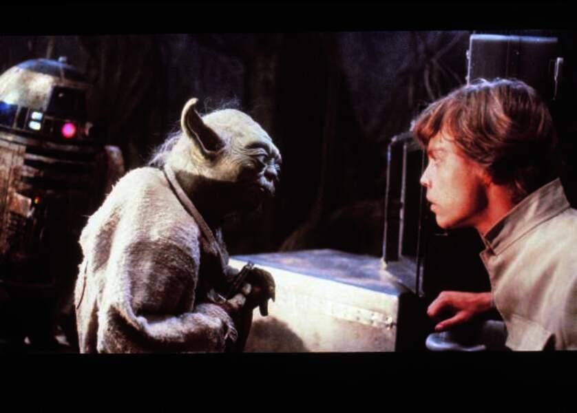 Maître Yoda et Luke Skywalker