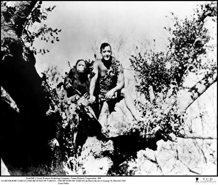 En 1920, Gene Pollar est Tarzan dans Le Retour de Tarzan !