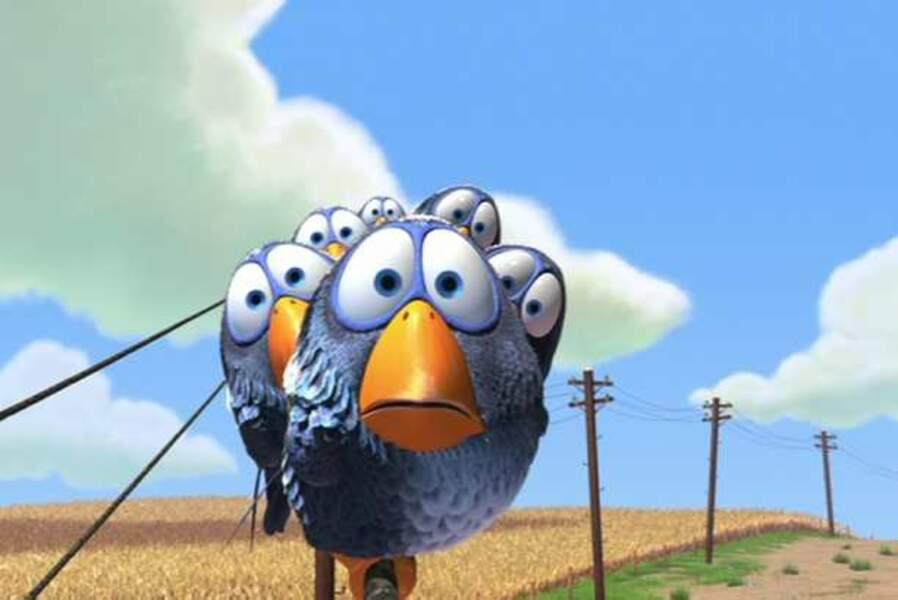 Les oiseaux (Drôles d'oiseaux sur une ligne à haute tension, court-métrage, 2000)