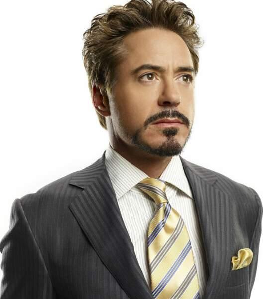 1) Robert Downey Jr. : 55,5 millions d'euros