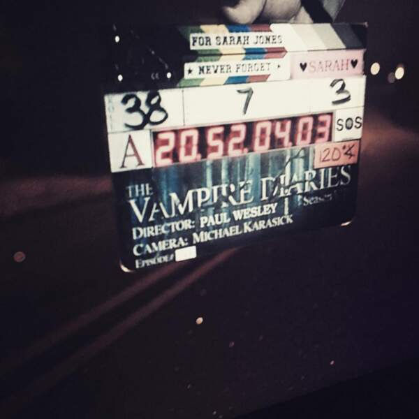 Paul Wesley a teasé l'épisode de The Vampire Diaries qu'il a réalisé.